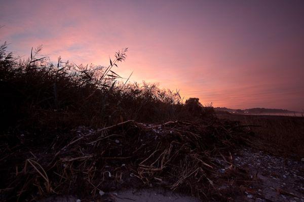 Between land and sea at sunset