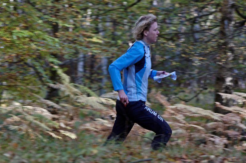 Orienteerer on the run