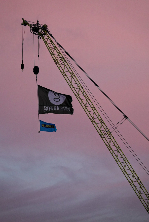 Early morning crane