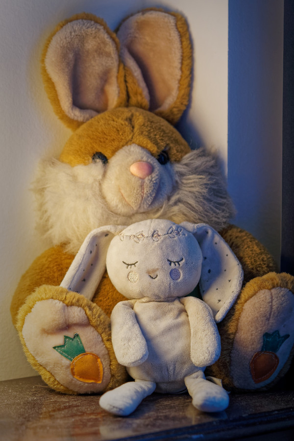 Big bunny had a little sister