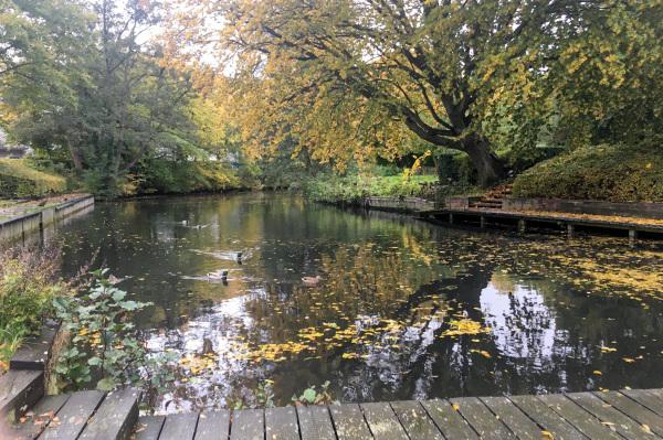 Branch of Lyngby Lake