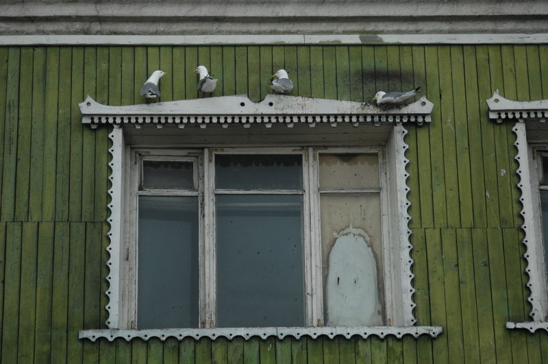 Birds on a creepy window Barentsburg