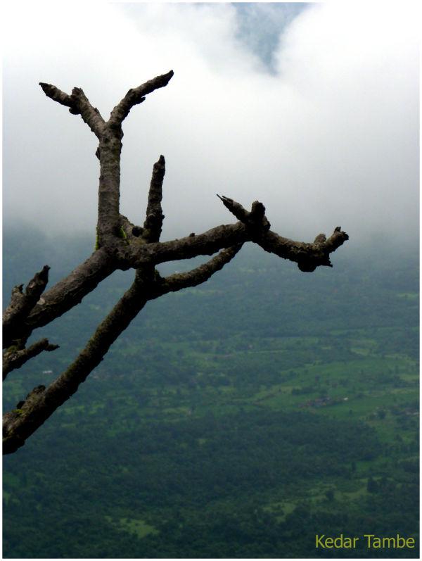 A fresh look after big monsoon season