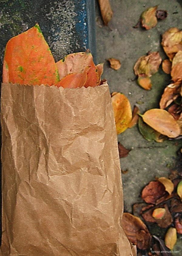 Atumn in a bag