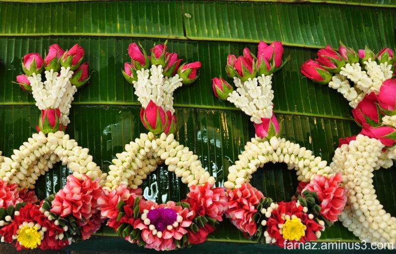 Sacred Flowers 3/5