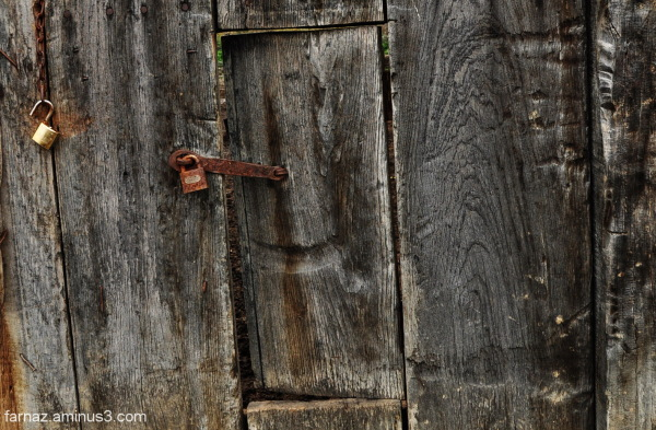 The door - 2/3