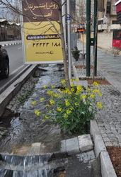 Tehran  4