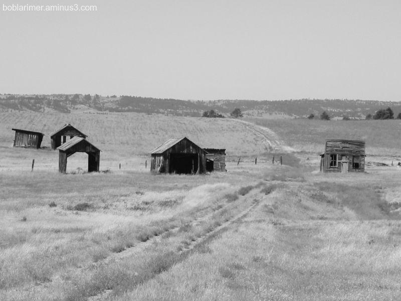Old Barns III