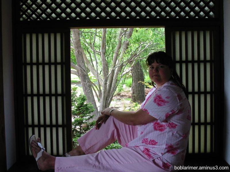 Sitting in the Window II