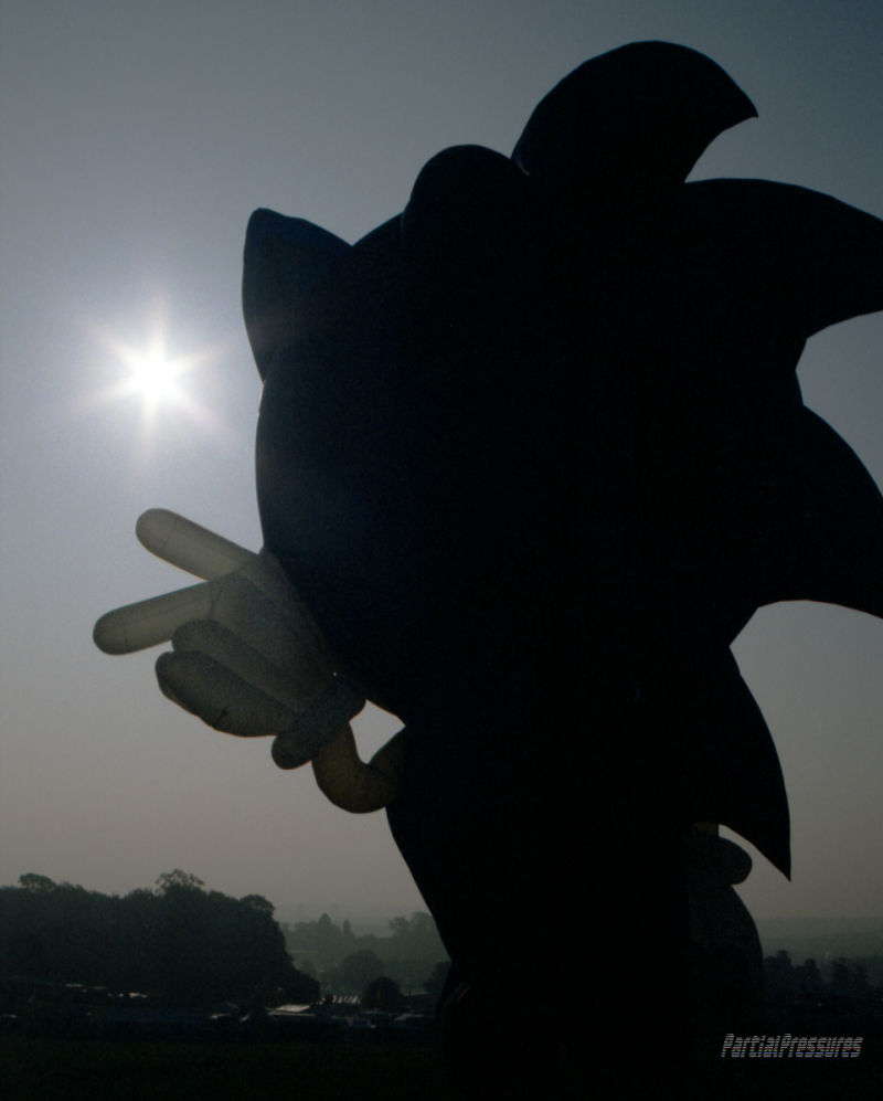 Sonic the Hedgehog gestures at the rising sun