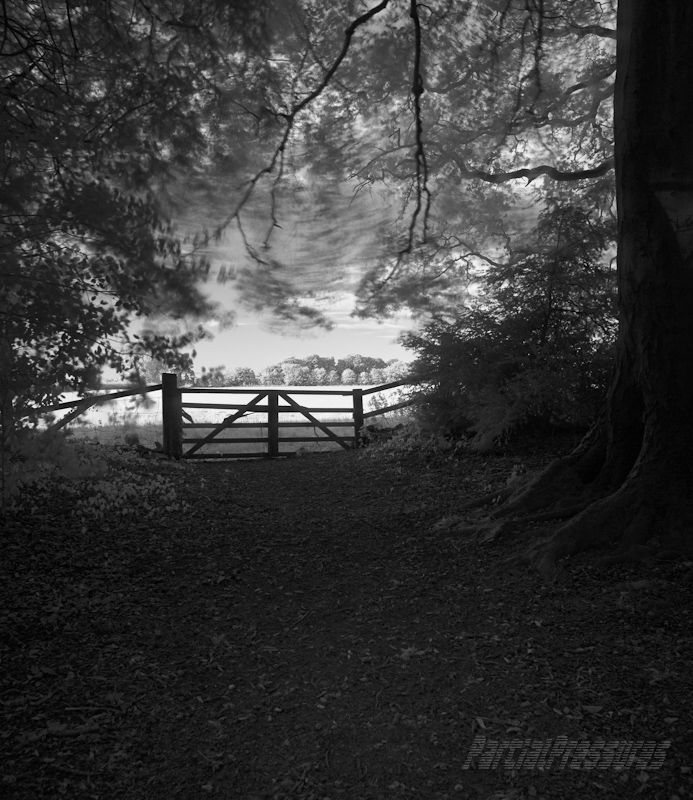 Gate between the worlds