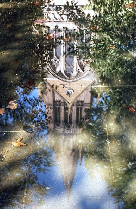 Reflections on Escher's Three Worlds