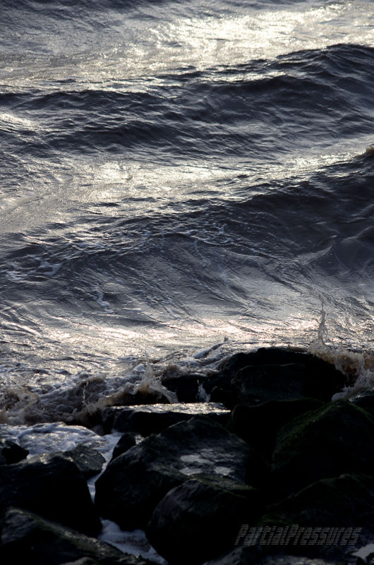Wind-whipped waves at high tide