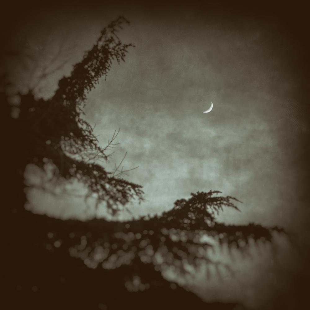 February Moon