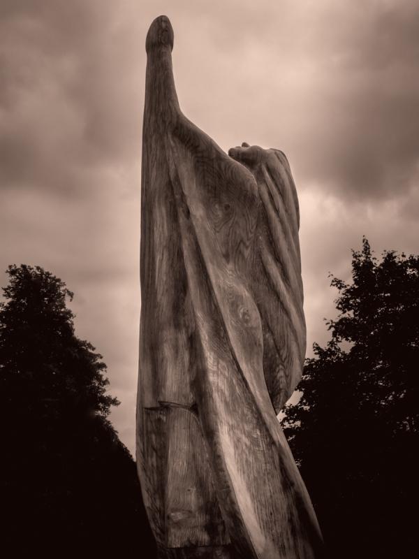 Tree Carvings: Light Worship