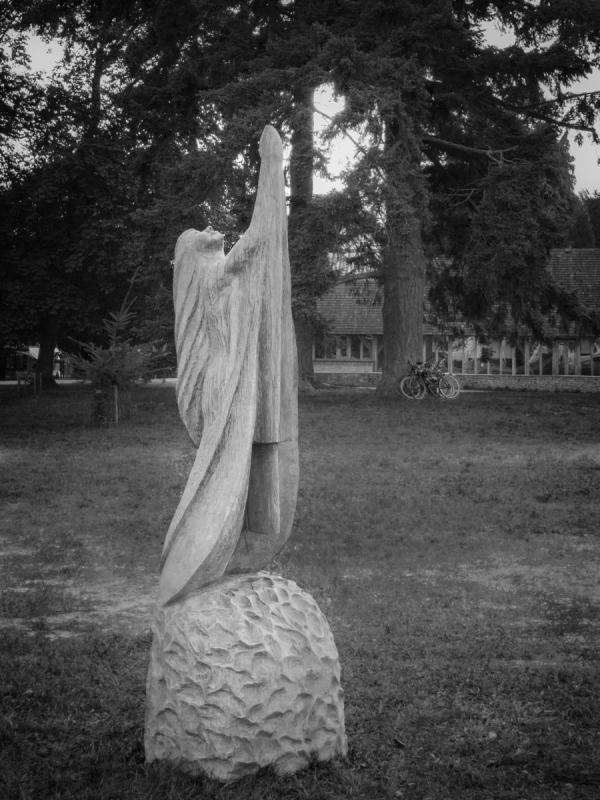 Tree Carvings: Light Worship (take 2)