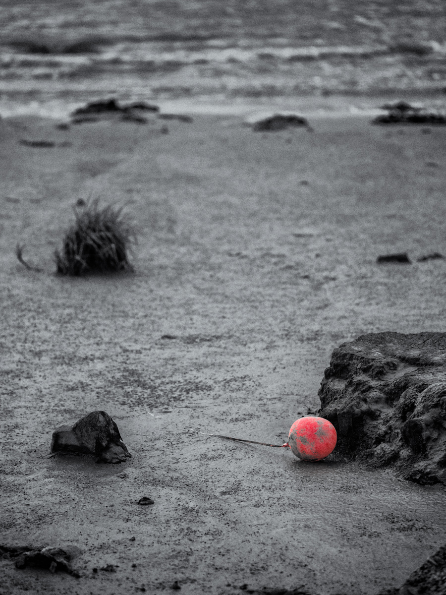Red's Last Wish