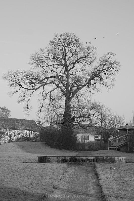 Spielplatz in Brunkensen im Leinebergland