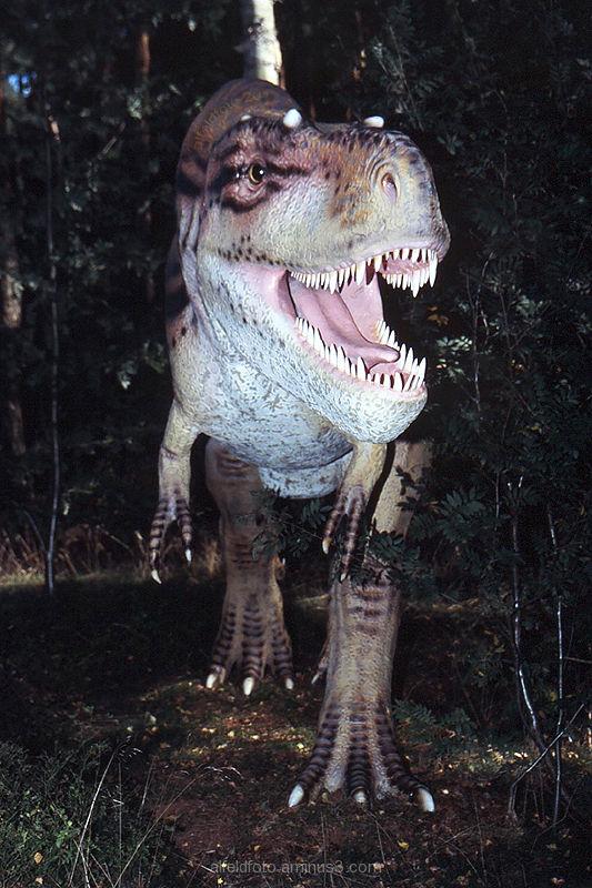 Hallo! Ein Alfelder in... Dinopark Münchehagen