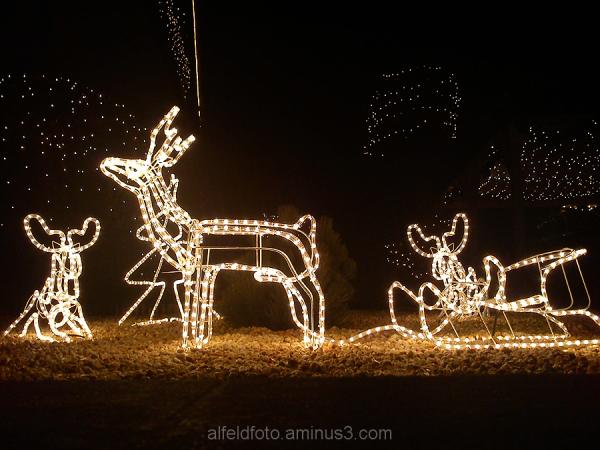 Weihnachtsschmuck in Alfeld (Leine)