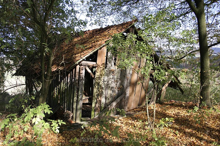 Hütte auf dem Idtberg bei Delligsen