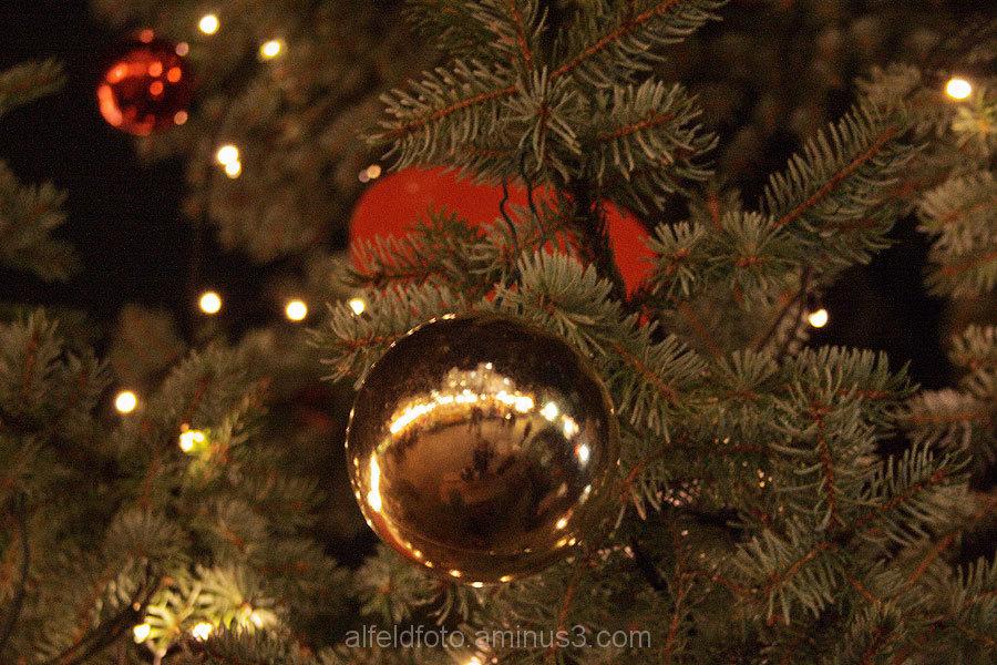 Weihnachtsbaum, Marktplatz in Alfeld (Leine)