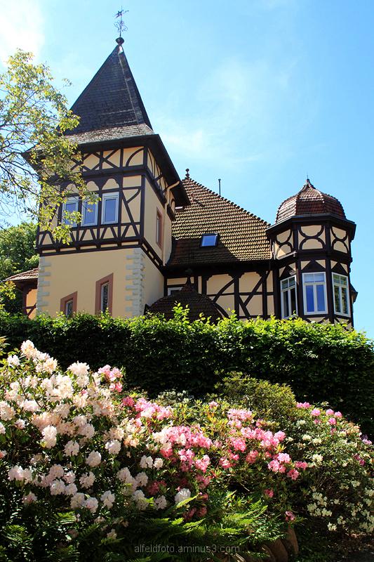 Schloss Rheden im Leinebergland