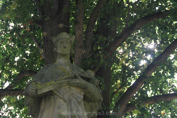 Naturdenkmal bei Winzenburg im Leinebergland