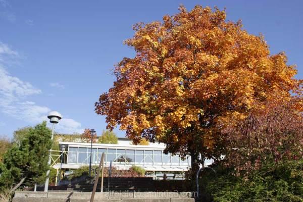 Berufsbildende Schule in Alfeld (Leine)