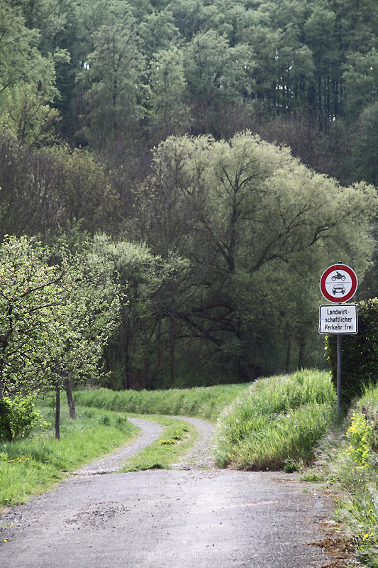Noch ein Weg im Leinebergland