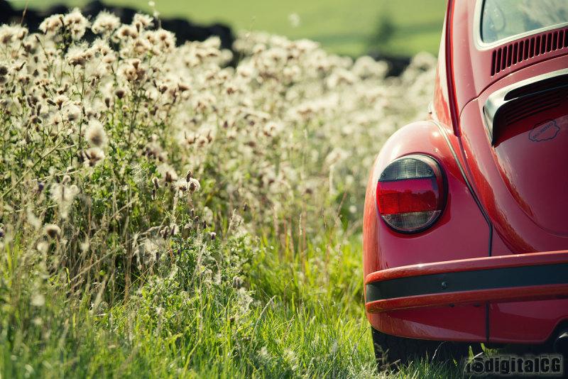 POTW13#35 - In The Weeds