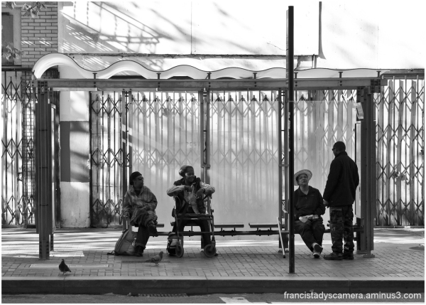 francis tady streets of san francisco bus stop