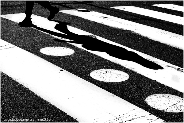 francis tady streets of san francisco abstract sp