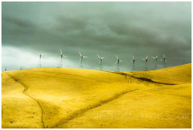 California  hill  windmills