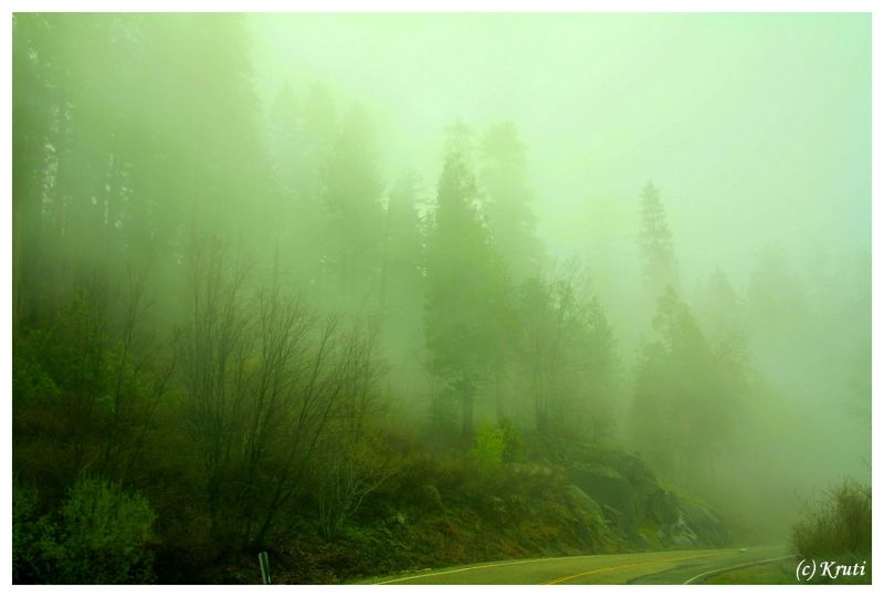 Road through mist and clouds at Yosemite
