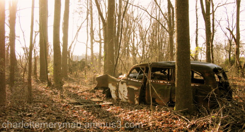 1954 Chevy Handyman rusted car in maryland woods