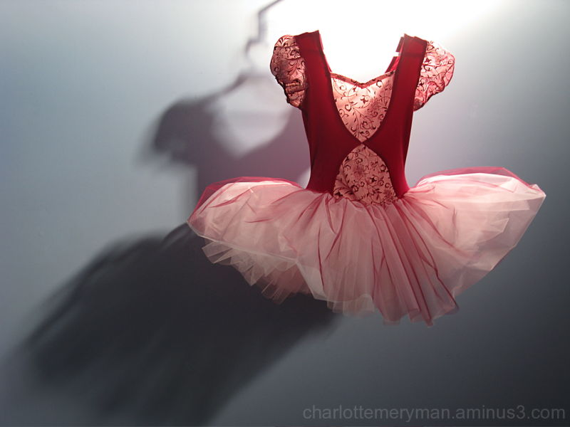 pink ballet tutu with shadow