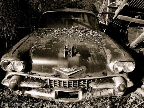 decaying 1958 cadillac b-w