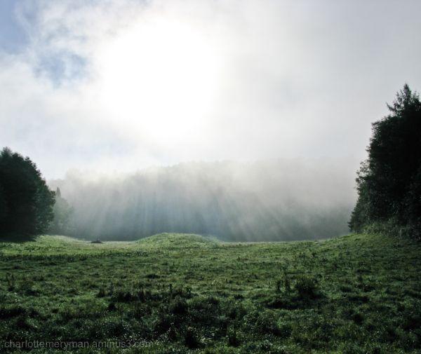 Mist rays