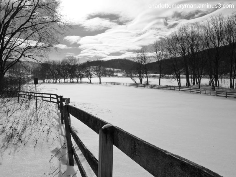 Fences in snow