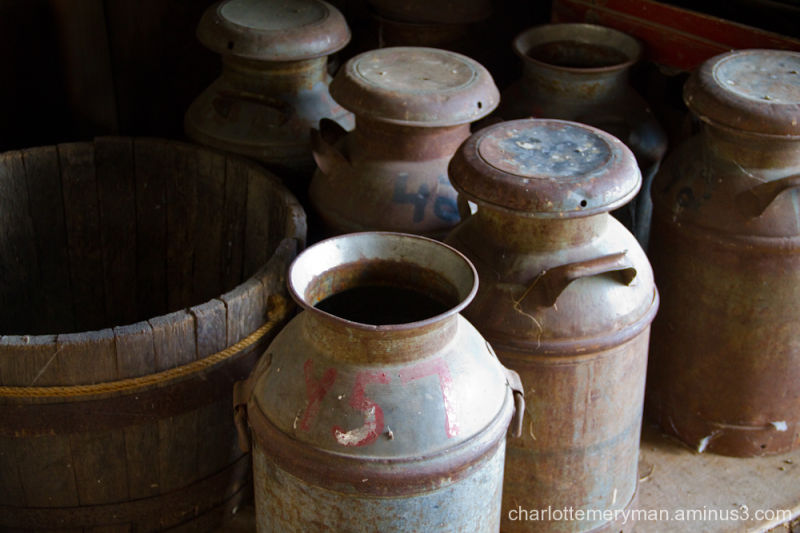 Milk pails