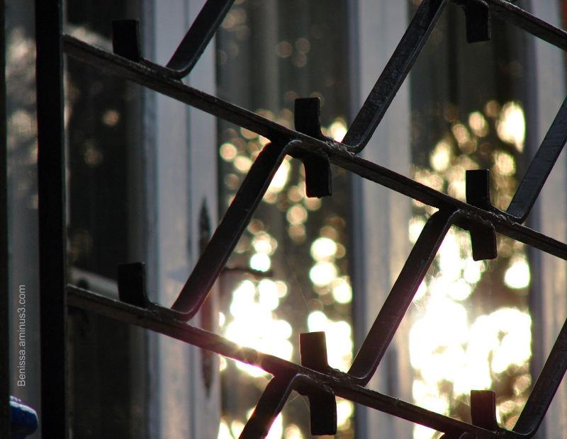Reflets dans une fenêtre