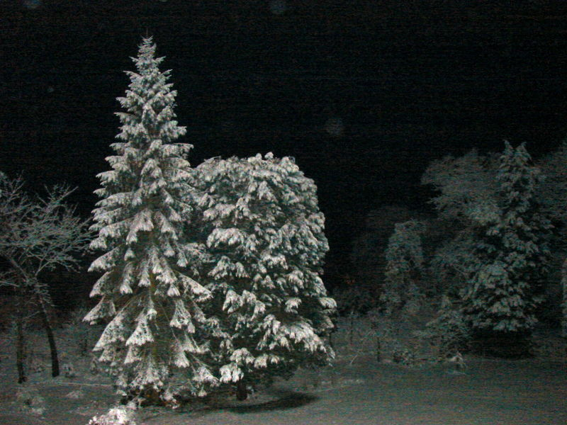 Snowing at night