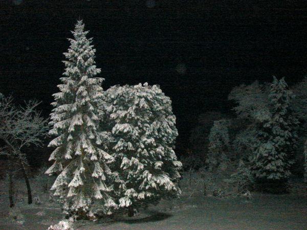 Snowing at night