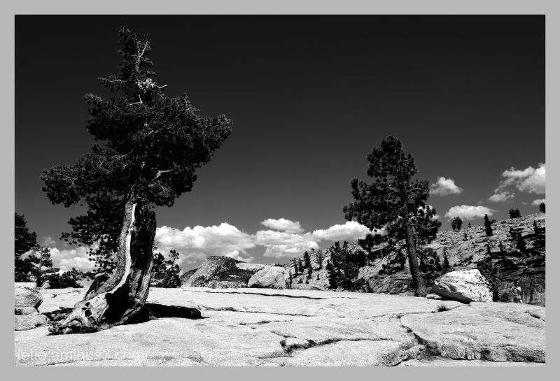 Behind the Half Dome