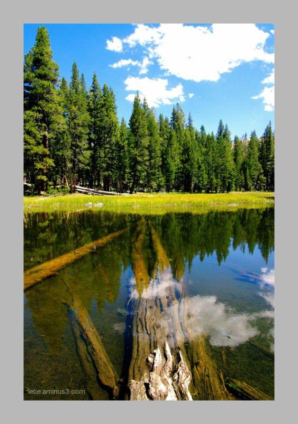 Yosemite, quelques km après la tioga pass