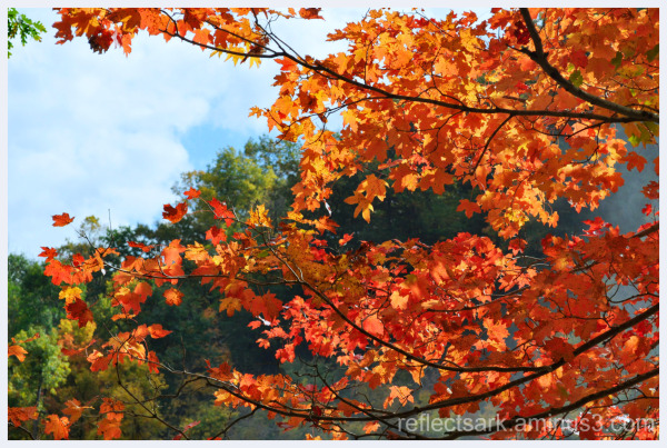 Ablaze - It's Autumn!