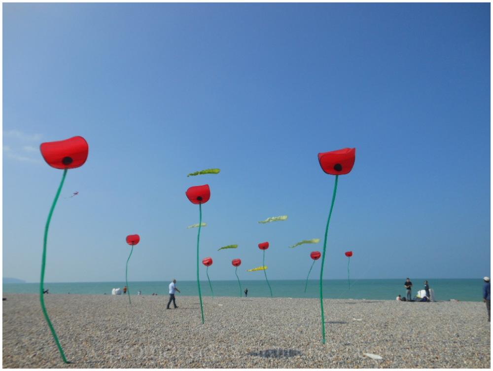 cerfs volants sur la plage de Dieppe