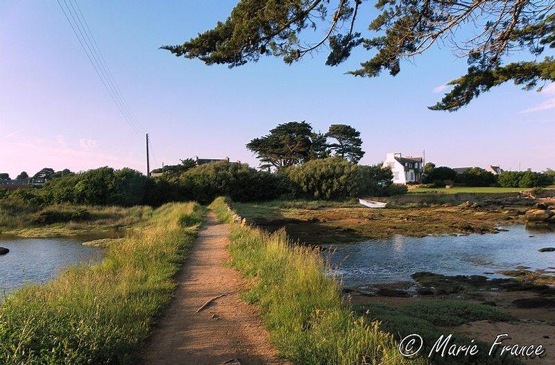 paysage de Bretagne, marais