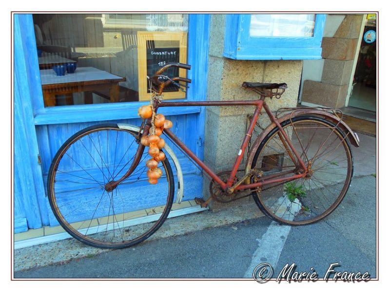Une vieille bicyclette à Roscoff....